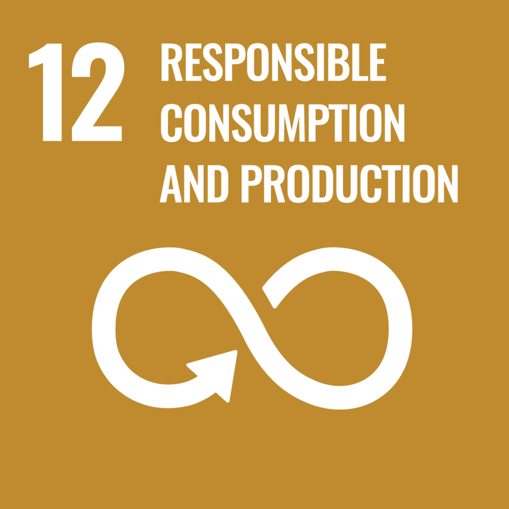UN's sustainability goal 12, responsible consumption and production
