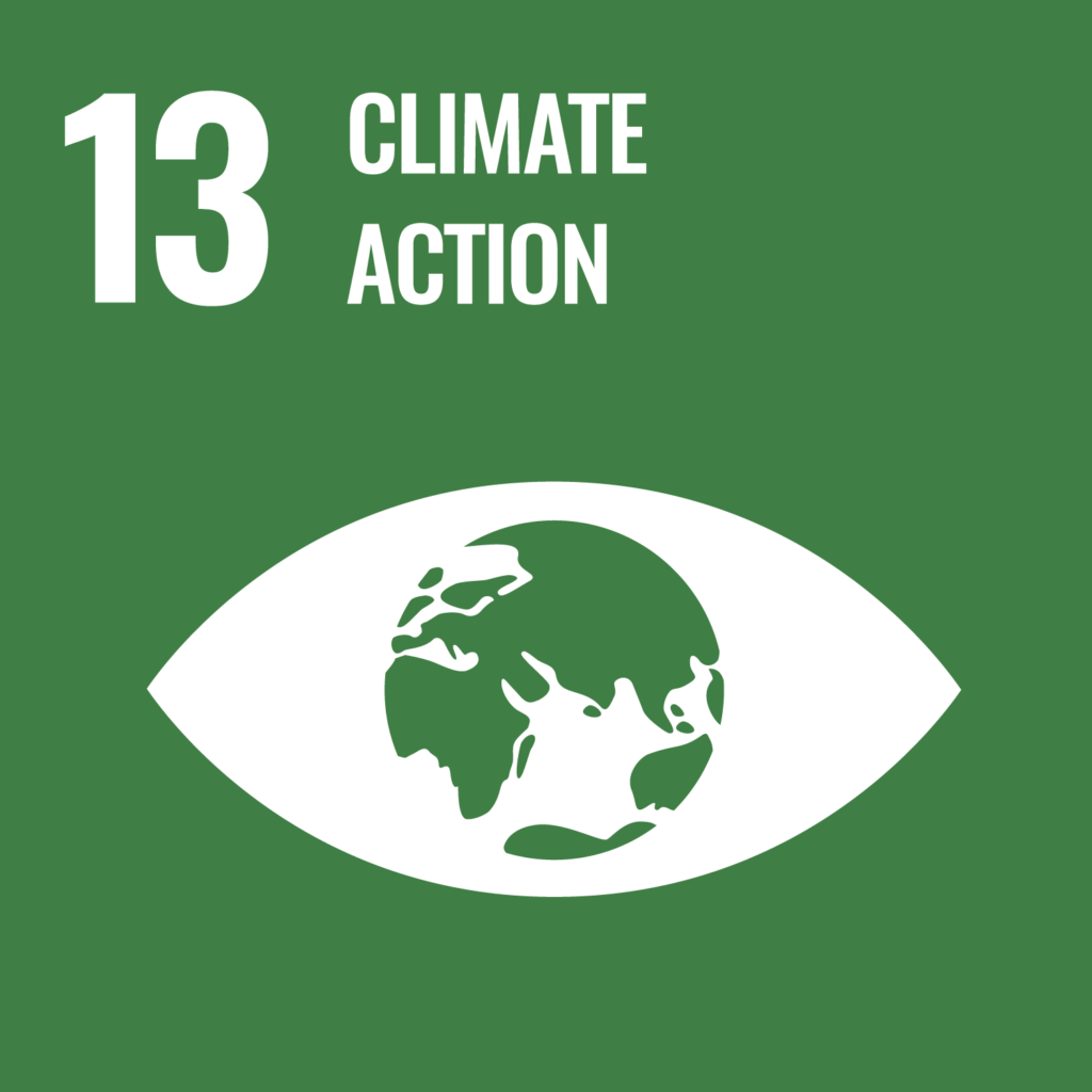 UN's sustainability goal 13, climate action